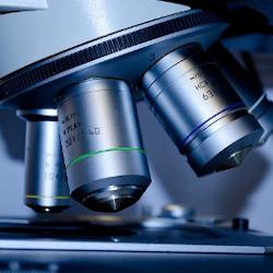 microscope slide and lenses
